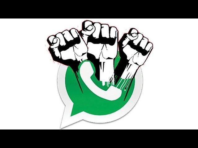 打手達 笑談whatsapp新功能 陰謀論狂踩屈屎app