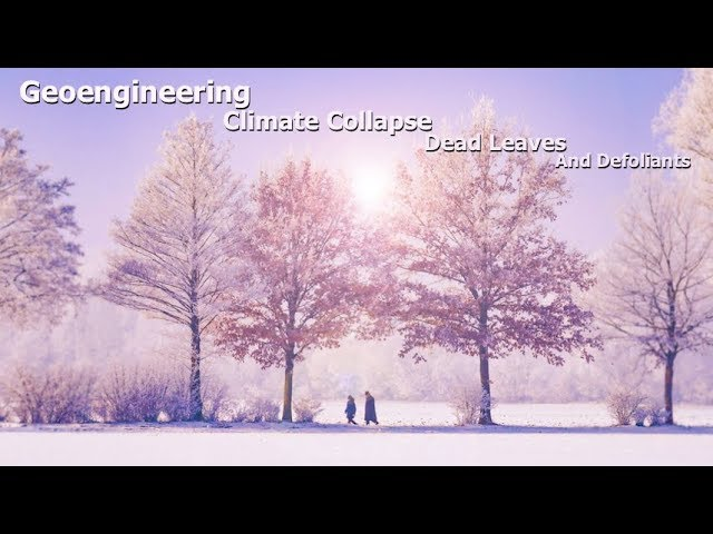 Geoengineering, Climate Collapse, Dead Leaves, And Defoliants ( Dane Wigington )