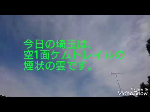 2019.1.8 PM12:20 埼玉県上空  ケムトレイル報告です。 すごい量撒かれてます。 みなさん、外出時はマスクを してください。