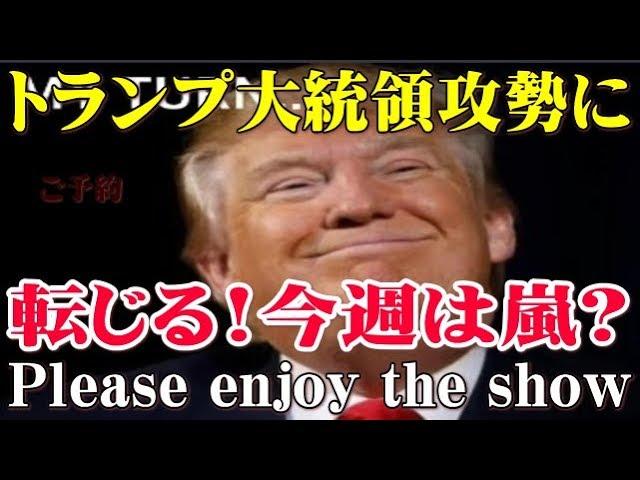 【樹林】Qアノン トランプ大統領攻勢に転じる! 今週は嵐??