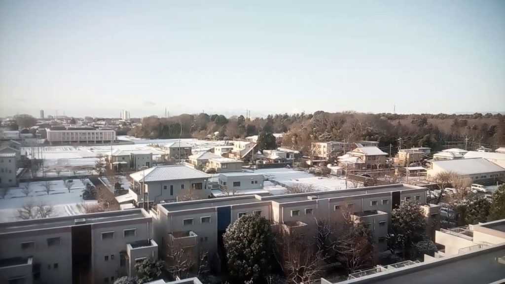 日曜日の朝はうっすらと雪化粧 2019.2.10