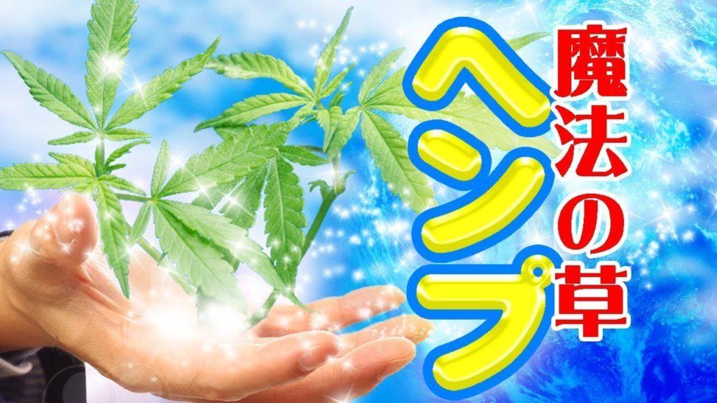 魔法の草ヘンプ #与国秀行 #新チャンネル