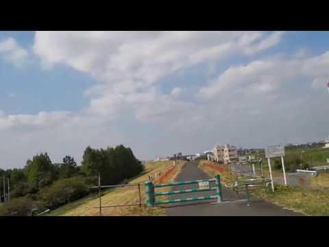 ケムトレイル沢山の人が気づき始めている!秋ヶ瀬公園の彼岸花