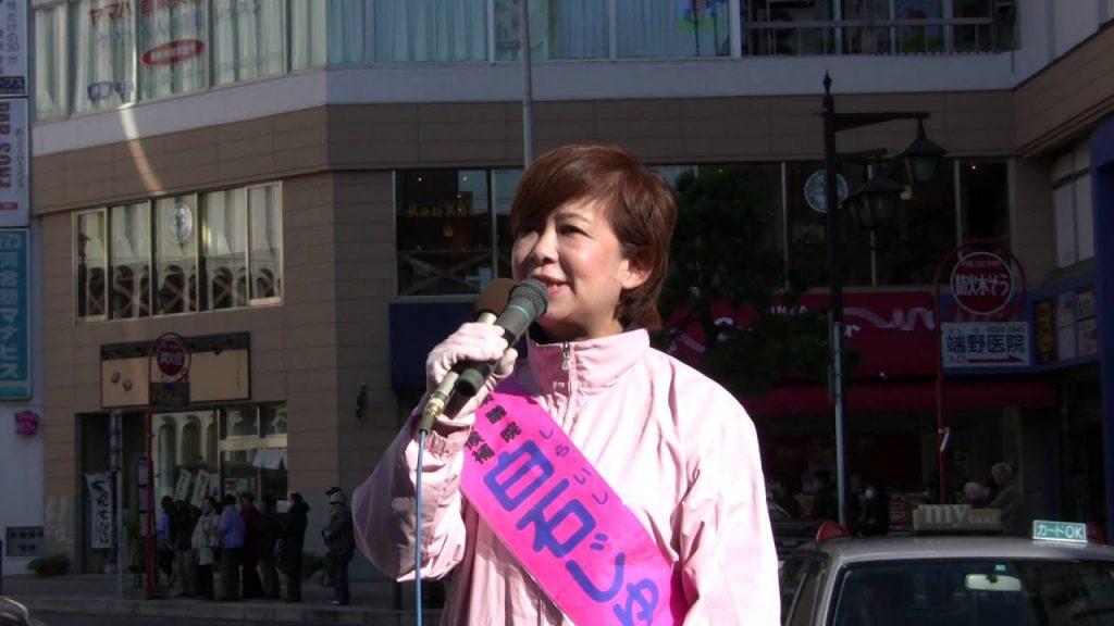 不正選挙の標的 日本未来の党 嘉田代表  相原 白石候補 演説 本八幡駅3