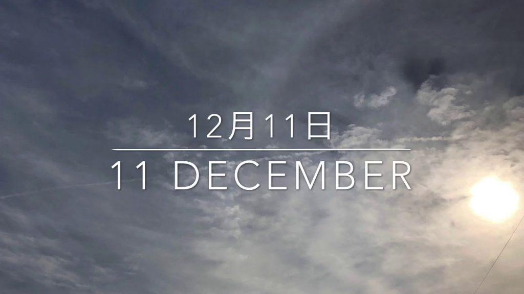 12月10日と11日の空 両日、ケムトレイル機も飛び、空が真っ白になりました。いつも化学臭がします。