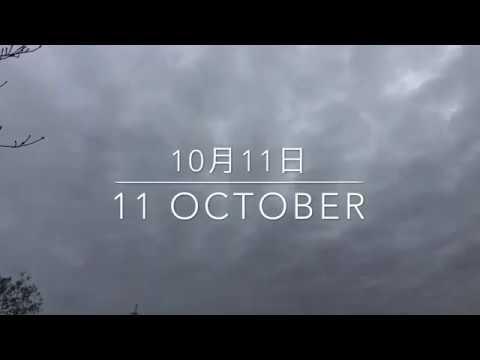 10月11日の空  ケムトレイルでできた雲で覆われた1日でした。