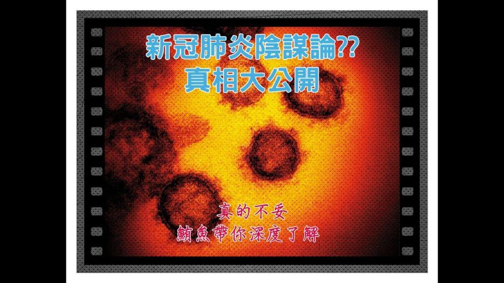 新冠肺炎的陰謀論 武漢肺炎真相大解析!! | 鮪魚解說【真的不妥】