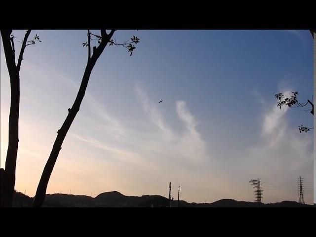 2020年ケムトレイル神戸2月総集。監視を緩めてはいけない!
