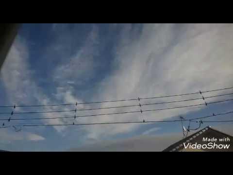ケムトレイル情報 2018年11月24日 埼玉県大宮、上尾方向に接近中。マスくせよ。